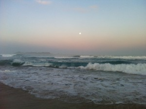 Opoutere surf